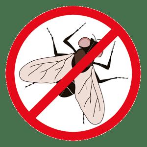 Anti Fly